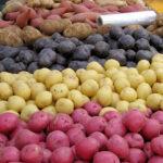 Solutii de pastrare a cartofilor pentru sezonul de iarna